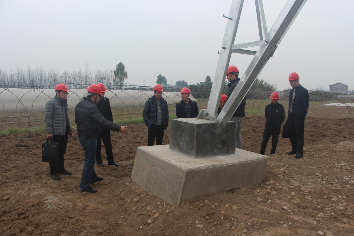 浙江送变电工程公司领导、专家莅临我 施工项目部参观考察