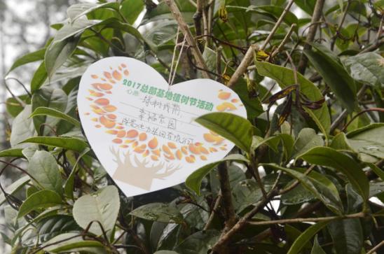 大地回春 植树造林 成蜀电力集团积极参加园区植树活动