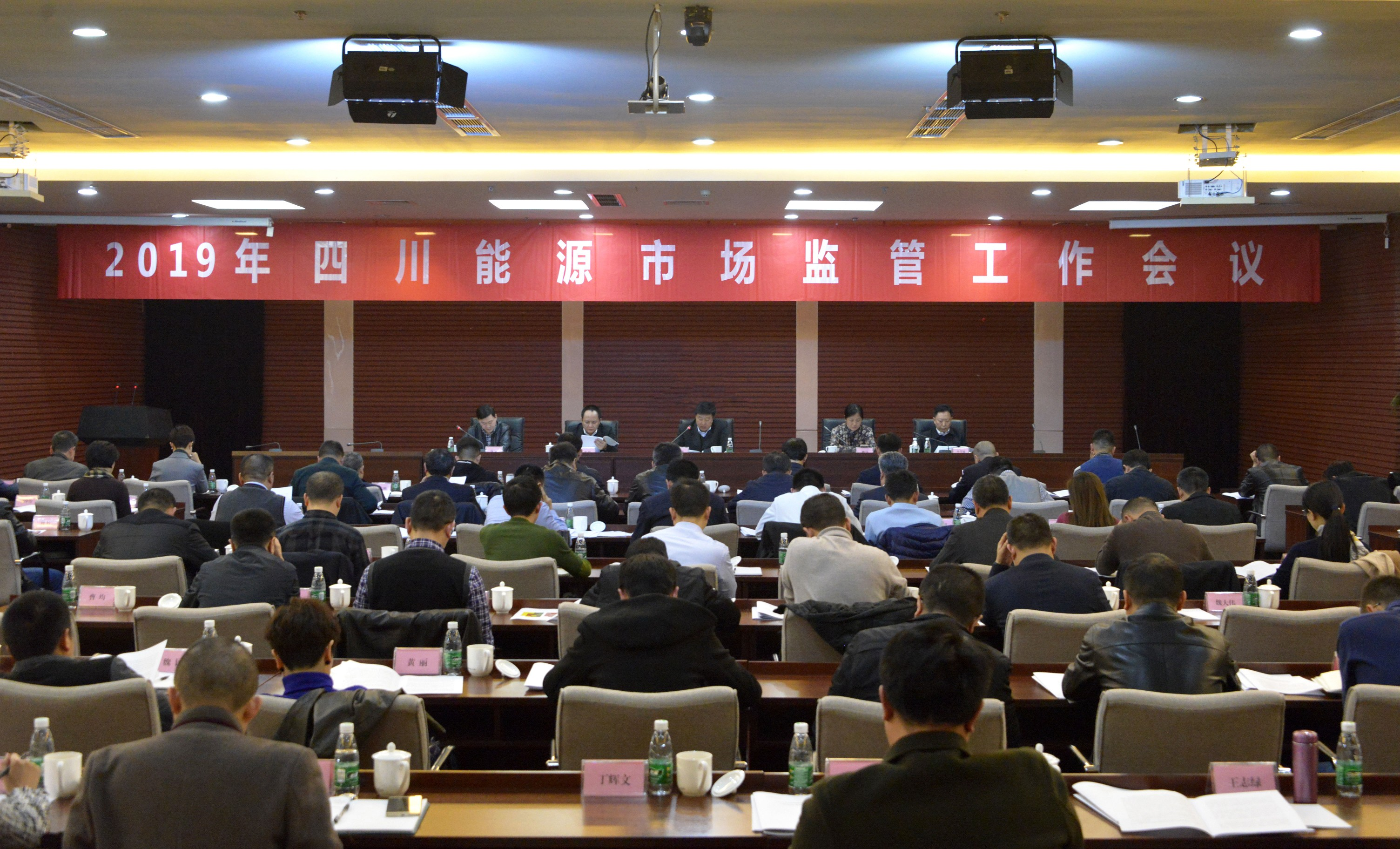 副总经理陈金华出席2019年四川能源市场监管工作会议