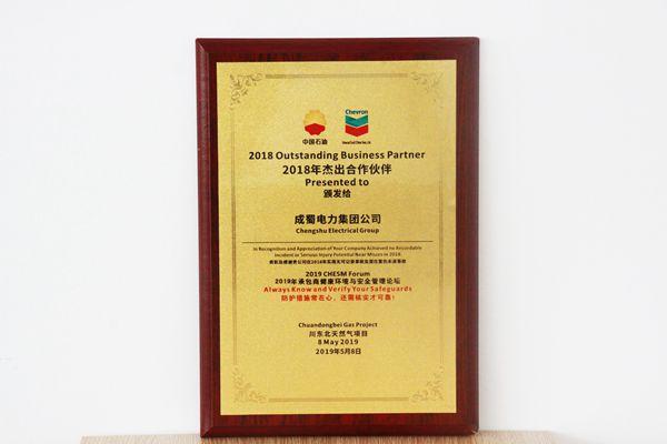 我集团荣获川东北天然气项目2018年杰出合作伙伴奖