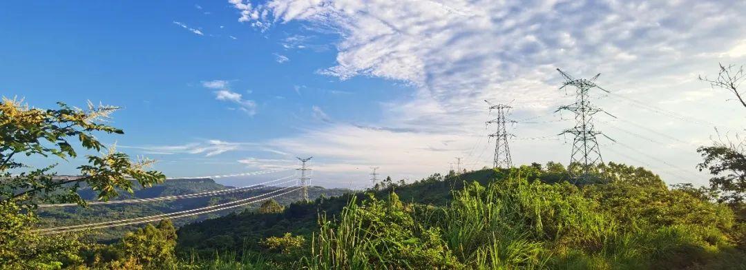 成蜀电力集团领导节日假期分赴项目一线指导工作
